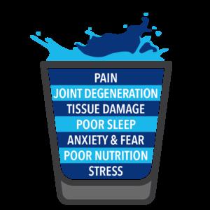 understanding pain 1